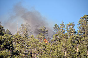 As 225 225 Syii Lake Fire Grows To About 1 000 Acres Navajo Times