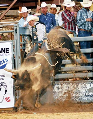 Fans Wow Bull Riders 92 Points Wins At Wild Thing